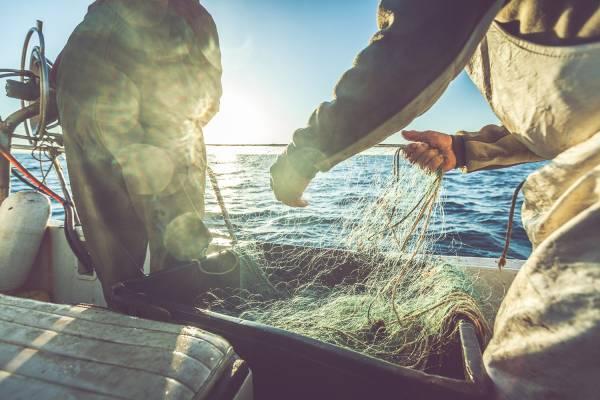 commercial fishermen on boat